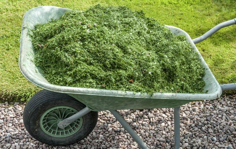 grass-mulch
