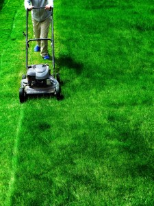 mowing bright green lawn