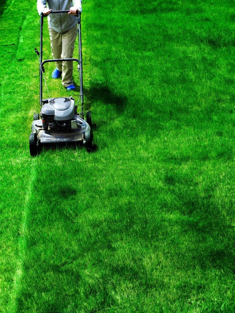 How Much Time Can You Save by Hiring a Lawn Care Service?